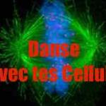 Danse avec tes Cellules