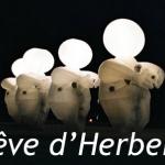 Rêve d'Herbert